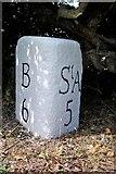 SX0159 : Old Milestone by Ian Thompson