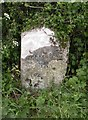 ST6702 : Old Milestone by the UC road, north east of Cerne Abbas by Colin Payne
