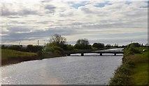 ST3144 : Puriton Road Bridge by N Chadwick