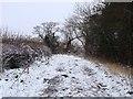 SK2831 : Snowy lane by Ian Calderwood