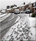 ST3090 : Footprints on a snowy pavement, Laurel Crescent, Malpas, Newport by Jaggery
