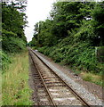 SU4320 : Single track railway from Chandler's Ford towards Romsey by Jaggery