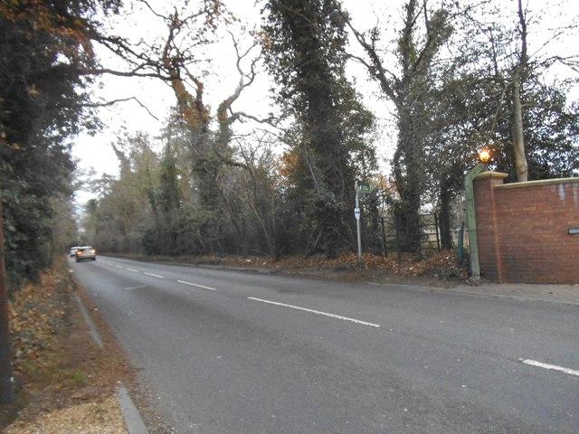 Fir Tree Avenue, Stoke Poges