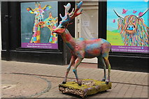 NS3321 : Deer at Newmarket Street, Ayr by Billy McCrorie