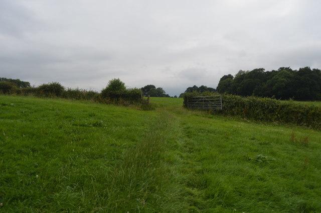 Footpath through gate