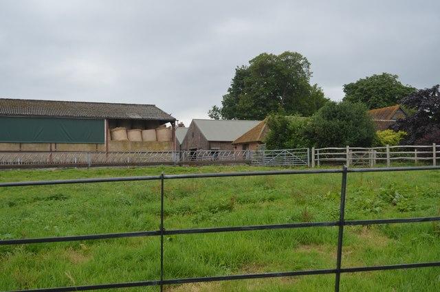 Stone Hall Farm