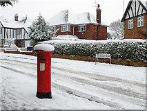 SO9095 : Snowing  on Sandringham Road in Penn, Wolverhampton by Roger  Kidd