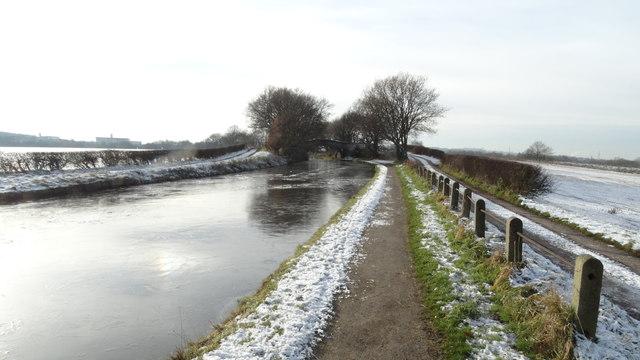 Bridgewater Canal by Moorefield Bridge, Moore
