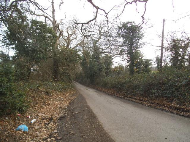 Hollybush Lane, Rush Green