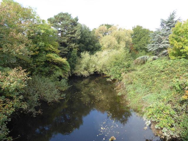 The River Teign, Newton Abbot