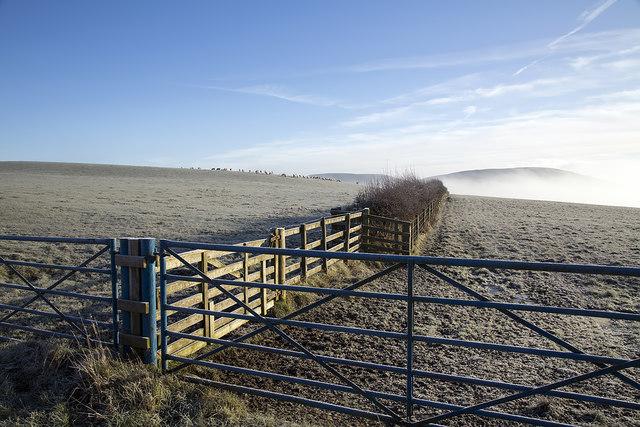 Frosted grazing fields near Minto Kames