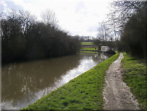 SP8828 : Grand Union Canal Walk by Shaun Ferguson