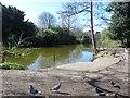 SJ3089 : Lake, Birkenhead Park, Birkenhead by Graham Robson