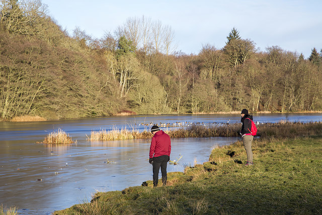 The Hen Poo Loch at Duns Castle Nature Reserve in mid-December