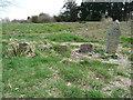 NS3521 : Pets' graveyard, Craigie Estate by Humphrey Bolton