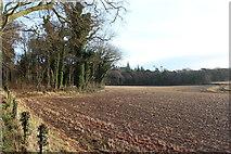 NS2209 : Farmland at Culzean Country Estate by Billy McCrorie