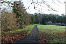NS2209 : Path at the Swan Pond, Culzean by Billy McCrorie