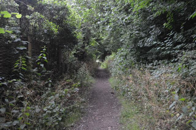 Footpath to Ardingly Reservoir