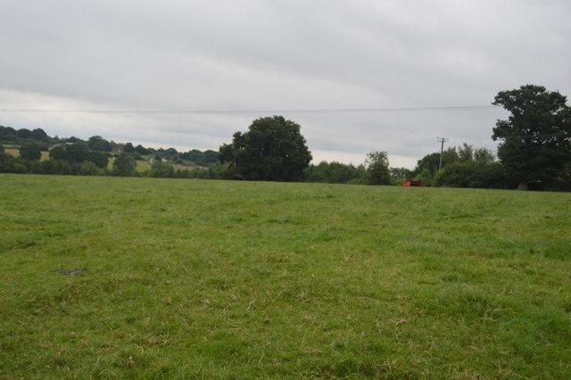Pasture, Balcombe
