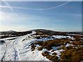 NS9018 : Track towards Wellgrain Dod by Alan O'Dowd