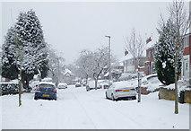 SO9096 : Winter in Penn, Wolverhampton by Roger  Kidd