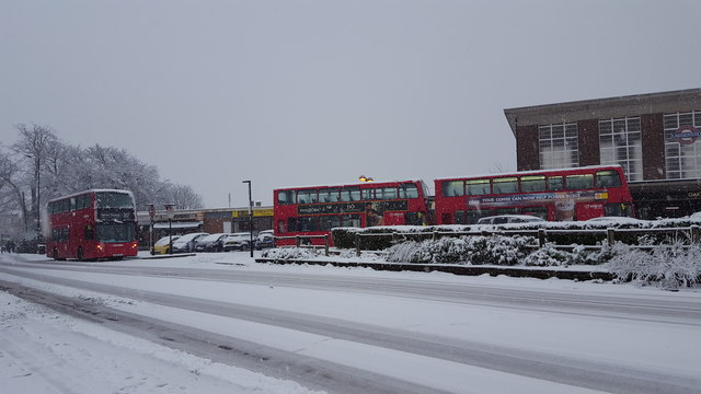 Buses Going Nowhere
