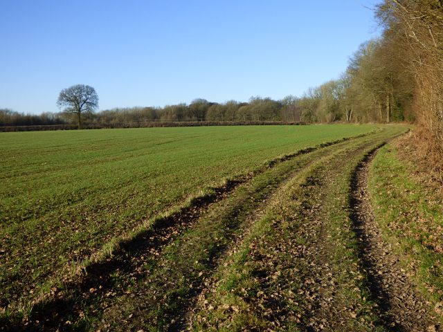 Farmland, Ellesborough