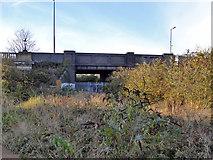 TM1543 : Bridge over former railway, Ipswich by Robin Webster