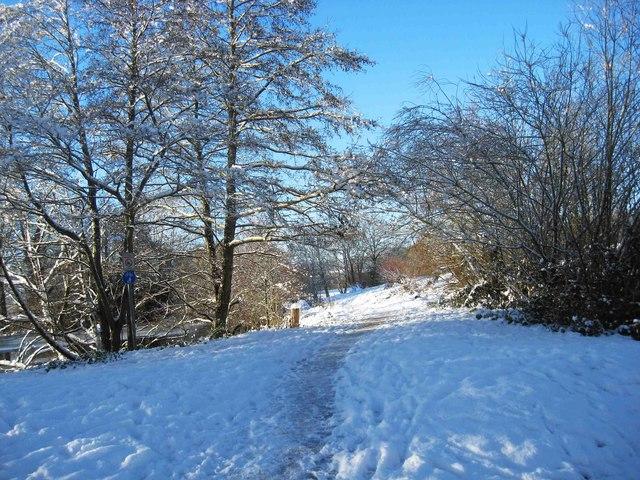 Snow in Springfield Park, Kidderminster