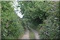 SU8707 : Stocks Lane by N Chadwick