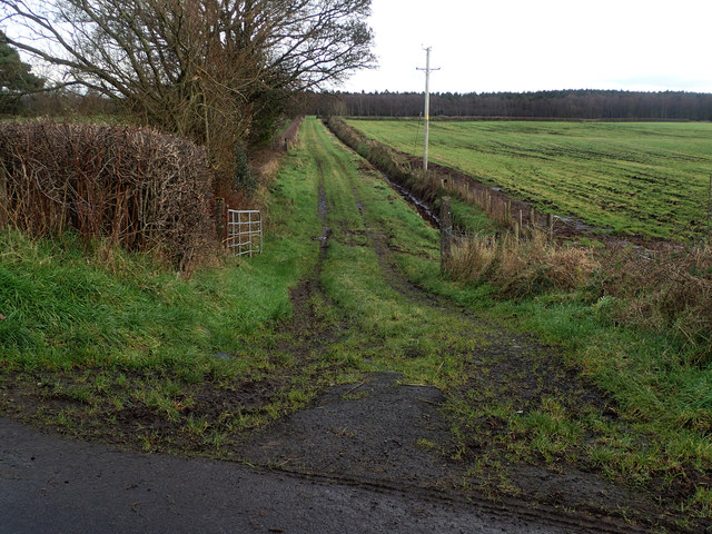 Beerhill Road