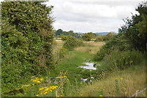 SU8607 : River Lavant (Ford Water) by N Chadwick