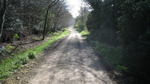 Path to Upper Sheringham Common