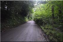 TQ3130 : Mill Lane by N Chadwick