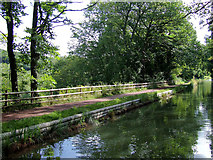 SO8785 : Canal north-east of Stourton, Dudley by Roger  Kidd