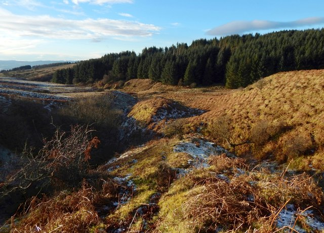 Glens of tributaries of the Murroch Burn