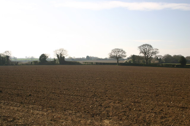 Path to Beckett's Farm
