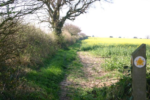 Path towards Hempstead