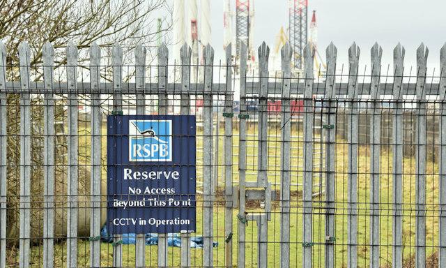 RSPB warning sign, Belfast harbour (December 2017)