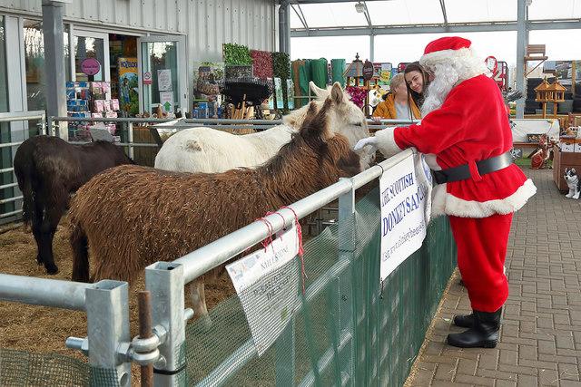 Santa meets the Milestone donkeys