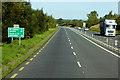 N6975 : Irish National Primary Route N3 near Drumbaragh by David Dixon