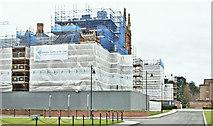 J3372 : Repair work, Queen's University, Belfast (December 2017) by Albert Bridge