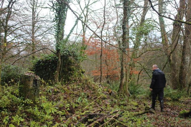 Ruin below Stentwood Farm