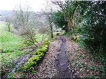 SE0722 : Hollas Lane (Sowerby Bridge Bridleway 81) by Humphrey Bolton