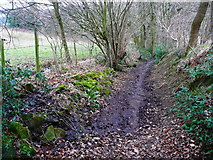SE0722 : Hollas Lane where stream flow enters, Norland by Humphrey Bolton