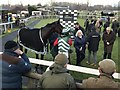 TF9228 : Morten's Leam in the winners enclosure at Fakenham Racecourse by Richard Humphrey