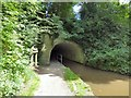SJ9392 : Woodley Tunnel Entrance by Gerald England