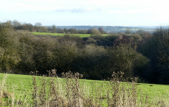 View over Colwick Woods