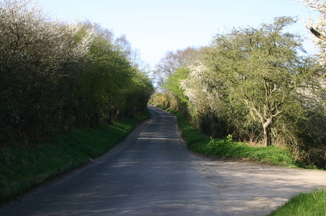 Holgate Hill