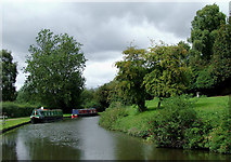 SO8483 : Canal at Kinver in Staffordshire by Roger  Kidd